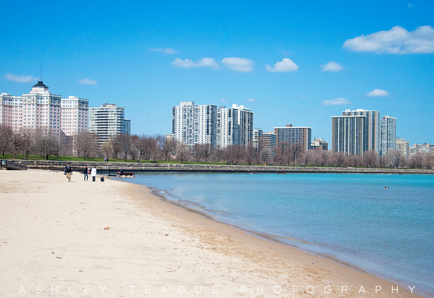 View of Edgewater from Foster Beach in Chicago, Illinois